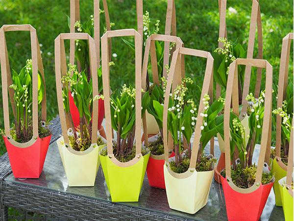 offrez du muguet pour le 1er mai votre fleuriste sur jouques peyrolles rians meyrargues. Black Bedroom Furniture Sets. Home Design Ideas